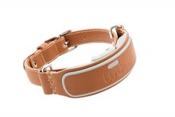Link AKC Smart Dog Collar – GPS Location Tracker, Activity Monitor, and More, Leather Smal ...