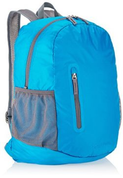 AmazonBasics Ultralight Packable Day Pack – Light Blue, 25L
