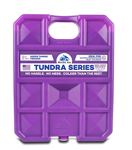 Arctic Ice Tundra Series Reusable Cooler Pack, 0.75-Pound