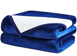 Fayonline Luxury Double-sides Reversible Fleece Blanket Super Soft Summer Cooling Warm Fuzzy Wei ...