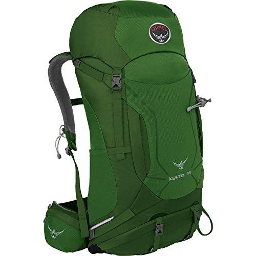 Osprey Packs Kestrel 38 Backpack, Jungle Green, Small/Medium